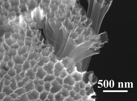 A scanning electron microscope photo of hollow carbon nanofiber-encapsulated sulfur tubes, at the heart of a new battery design.
