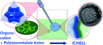 Synthetic Cells - Ion exchange leads to complex cell systems with inorganic membranes