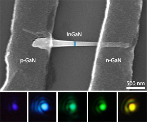 A scanning electron microscopy image of the GaN/InGaN nanorods (upper) and examples of the light produced by nanorod LEDs