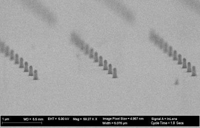 SEM of Diamond Nanoposts