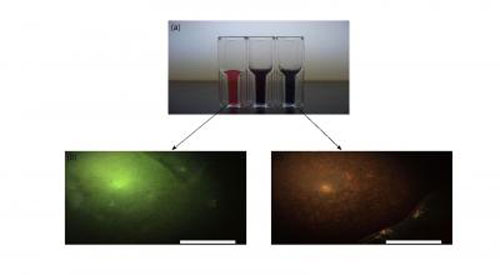 Gold Nanoparticle Solutions and Corresponding Phantom Images