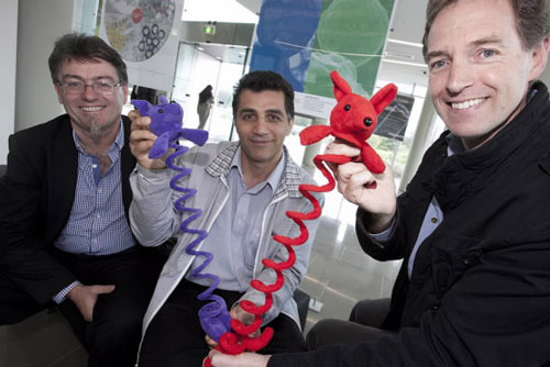 ACES Chief Investigator for the project Professor Geoff Spinks (right) is pictured with Professor Gordon Wallace (left) and Dr Javad Foroughi