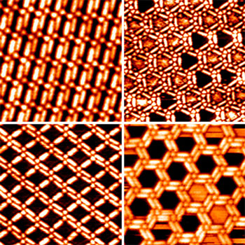 Scanning tunneling microscopy images showing various TMA–BPBP networks