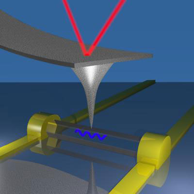 Single Nanowire Piezoelectricity