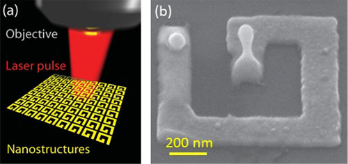 gold nano-droplet has been melted by the laser pulse