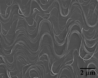 buckled nanotubes look like squiggly lines on a flat surface