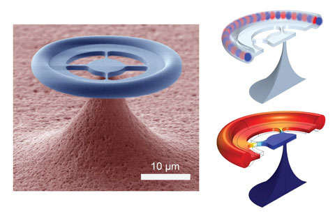 glass donut for quantum optics