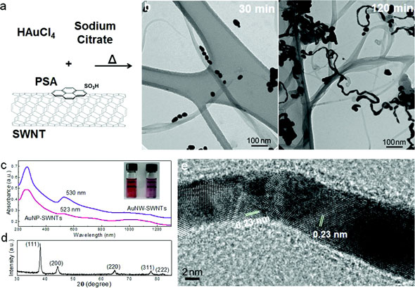 Synthesis and characterization of gold nanowires