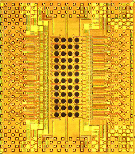 Photomicrograph of IBM Holey Optochip