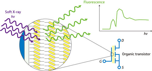 A schematic of fluorescence yield x-ray absorption spectroscopy