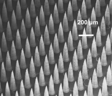 dense arrays of tiny semiconductor tips