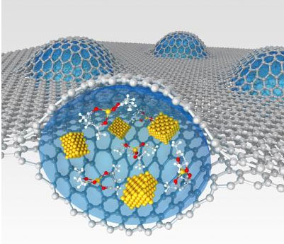 Sandwiched two sheets of graphene encapsulate a platinum growth solution