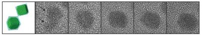 TEM images of platinum nanocrystal coalescence and their fecating in the growth solution