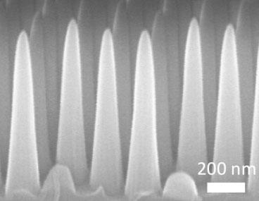 nanocones