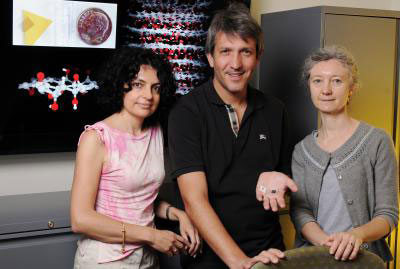 Elisa Riedo, Angelo Bongiorno and Claire Berger, Georgia Tech