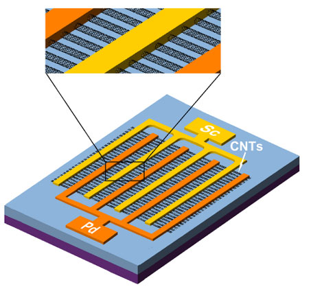 single-walled carbon nanotube photodetector