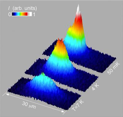 Trapped Excitons Form Coherent Matter Wave