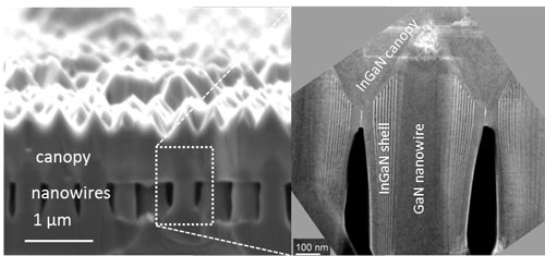 Cross-sectional images of a indium gallium nitride nanowire solar cell