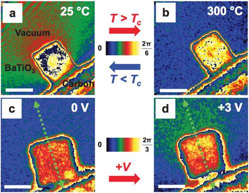 Direct polarization images of individual ferroelectric nano cubes captured with electron holography