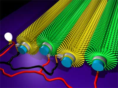 a 'bottle-brush' structure shows nanowires arranged around a fiber