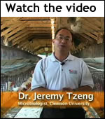 nanoparticle chicken feed video