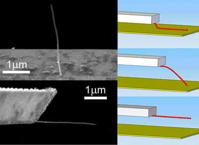 Nanotube attached to a microcantilever