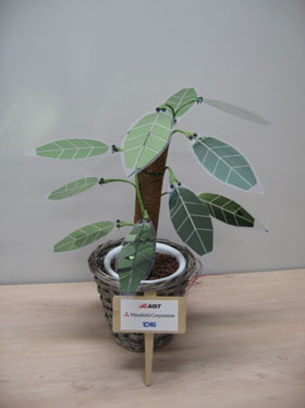 prototype of a foliage plant-like solar cell module