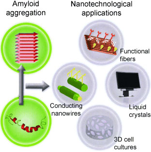 nanoporous film for nanofiltration