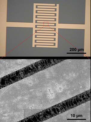 Detector uses nanotubes to sense deadly gases