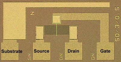 FeFET for Fe-NAND flash memory