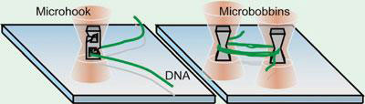 microneedle and microbobbins making single, long DNA strands easier to control