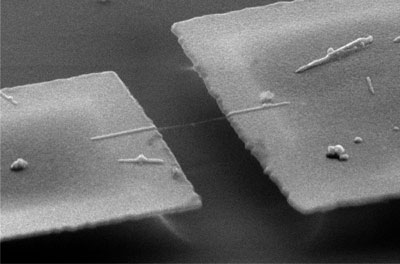 A suspended nanotube is attached to two large gold electrodes