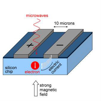 Microwaves are used to control the spin state of electrons held in silicon.