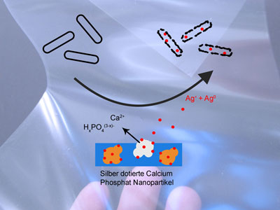 The self-disinfecting action of the silver and calcium phosphate nanoparticles applied to the plastic film