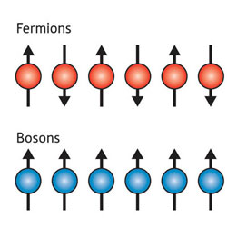 The spins on a chain of fermions (top) point in alternating directions, whereas the spins on a chain of bosons (bottom) all point in the same direction