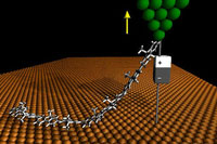 Single polymer chains as molecular wires