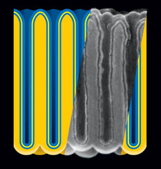 Electrostatic nanocapacitors formed in nanoporous anodic aluminum oxide (darker yellow) film by sequential atomic layer deposition of metal (blue), insulator (yellow), and metal. Insert: cross-section of actual structure, represented as rescaled scanning electron micrograph