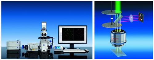 Left: Cell Observer SD provides high-end research in the field of the life sciences with new experimental possibilities. Right: Spinning-disc technology enables confocal observation of very fast processes in live cell imaging experiements