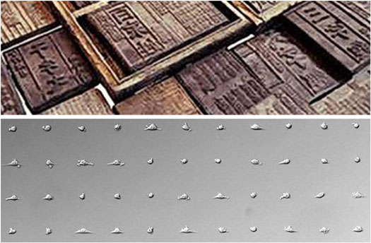 Cells printed in a grid pattern by block cell printing technology (bottom) and woodblocks used in ancient Chinese printing
