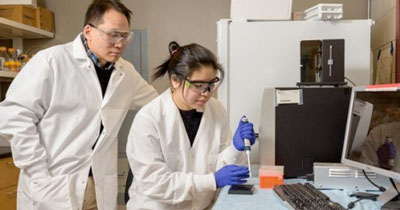 Wilfred Chen (left) and Rebecca P. Chen are developing new biomolecular tools