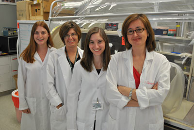 Michigan State University researchers