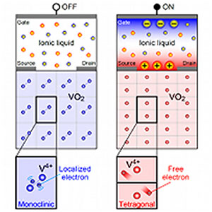 VO2-based electric-double-layer transistor in OFF and ON states