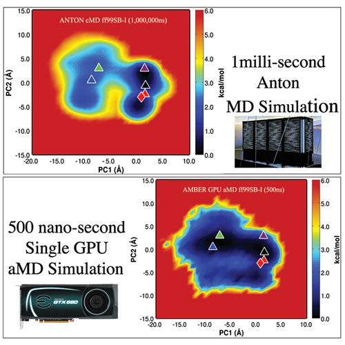 Images showing the conformational space explored by the protein in the 1ms conventional MD Anton simulation, and the 500ns aMD simulation