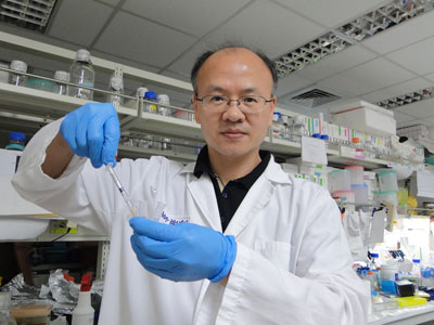 Dr. Hsieh in his lab
