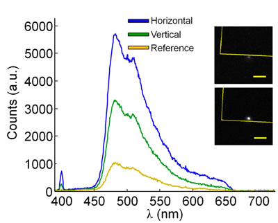 Experimentally collected spectra from the trapped fluorescent microbead-BNA system