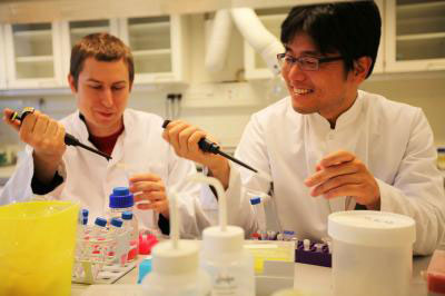 Chemistry researcher Tom Vosch and plant molecular biologist Seong Wook Yang
