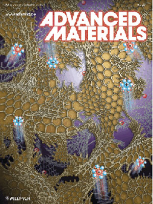 3-D structure of a new polymer-derived nanographene bulk material