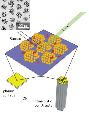 Schematic of a nanocluster SERS substrate in planar chip and fiber-optic configurations