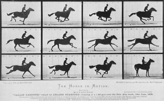 Eadweard Muybridge's famous Horse in Motion marked the beginning of high-speed photography