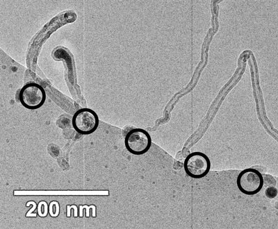 Bright field transmission electron micrograph showing carbon nanotubes